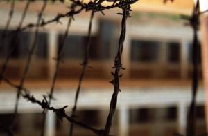 Как в России соблюдается Конвенция против пыток? Отвечают российские НКО