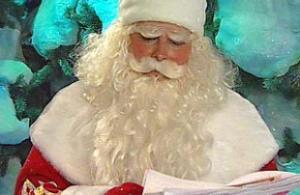 Правозащитный Дед Мороз получился грустным