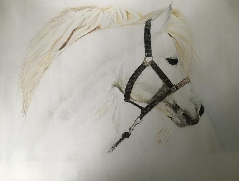 Фердавс — 14-летний художник-самоучка